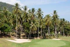 Piękny pole golfowe i drzewko palmowe Wyspy Koh Samui, Tajlandia Zdjęcia Stock