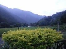 Piękny ranek, Rishikesh fotografia royalty free