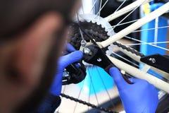 piękny roweru góry naprawy naprawianie target1906_0_ kobiety Zdjęcia Royalty Free