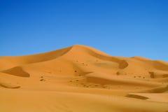 Piękny Sahara Zdjęcia Stock