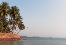 Piękny seascape z drzewkami palmowymi przeciw niebieskiemu niebu Fotografia Royalty Free