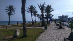 Piękny spacer morzem Fotografia Stock