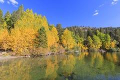 Piękny spadku kolor w Kalifornia Fotografia Royalty Free