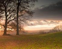 Piękny spadku widok przez drzew typowy anglika krajobraz Zdjęcia Royalty Free