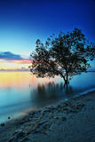Piękny Tanjung Pendam Belitong Zdjęcie Stock