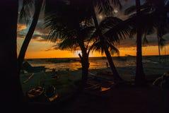 Piękny tropikalny krajobraz z drzewkami palmowymi przy zmierzchem Boracay, Filipiny Fotografia Stock