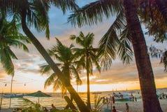Piękny tropikalny krajobraz z drzewkami palmowymi przy zmierzchem Boracay, Filipiny Fotografia Royalty Free