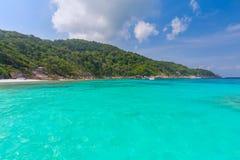 Pi?kny tropikalny piaskowatej pla?y i bujny zielony ulistnienie na tropikalnej wyspie, Similan wyspy Tajlandia obraz royalty free