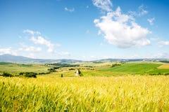 Piękny Tuscan krajobrazu widok Zdjęcia Stock