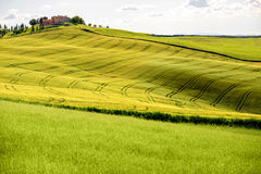 Piękny Tuscan krajobrazu widok Fotografia Royalty Free