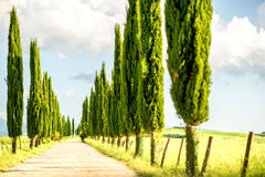 Piękny Tuscan krajobrazu widok Obrazy Royalty Free