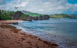 Piękny widok od Barbados Zdjęcia Stock