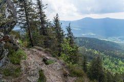 Piękny widok od Grosser Osser, Bawarski park narodowy, Niemcy Fotografia Royalty Free