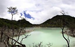 Piękny widok ogromny zielony jezioro Fotografia Stock