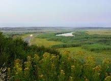 Piękny widok prosta rzeka Zdjęcia Stock