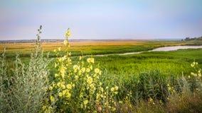 Piękny widok prosta rzeka w nizinie Zdjęcia Stock