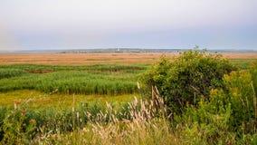 Piękny widok prosty pole w nizinie Obrazy Stock