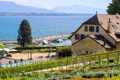 Piękny widok przy jeziornymi Genewa, Lac Leman lub Alp górami przez ogródu na wzgórzu Nyon zdjęcie stock