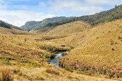 Piękny widok rzeka w Horton równinach zdjęcie stock