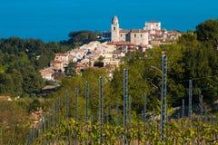 Piękny widok Sirolo miasteczko od winnicy Obraz Stock