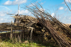 Piękny wiejski krajobraz, ogrodzenie, pole, wiatraczka holendera wiatraczek Zdjęcia Stock