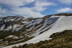 Piękny wiosna krajobraz w Carpathians górach Ukraina Zdjęcia Stock