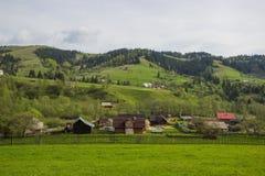 Piękny wiosna krajobraz w Carpathians górach Ukraina Fotografia Stock