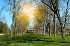 Piękny wiosna krajobraz w dzikim parku natura Fotografia Royalty Free