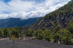 Piękny wulkanu krajobraz na losie angeles Palma, wyspy kanaryjska, Hiszpania Obrazy Royalty Free