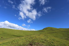 Piękny wysoka góra obszar trawiasty w Chiny Fotografia Royalty Free