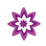 Piękny wzór - kwiatu wzór - Obraz Stock