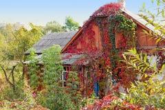 Piękny Zaniechany jesieni dom na wsi Zdjęcie Stock