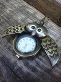 Piękny zielony sowa zegarek na drewnie Fotografia Stock