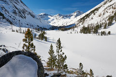 Piękny zima krajobraz, Altai góry, Syberia, Rosja Obraz Stock