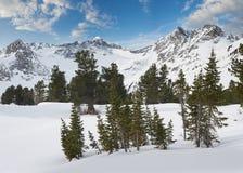 Piękny zima krajobraz, Altai góry, Syberia, Rosja Obraz Royalty Free