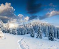 Piękny zima krajobraz w górach Zdjęcie Stock