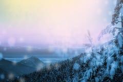 Pi?kny zima krajobraz z lasem, drzewami i wschodem s?o?ca, winterly ranek nowy dzie? purpurowy zima krajobraz z zmierzchem obraz royalty free
