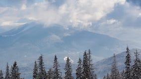 Pi?kny zima krajobraz z ?niegi zakrywaj?cymi drzewami caucasus Georgia gudauri g?r zima zbiory wideo