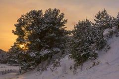 Piękny zima zmierzch z Zdjęcia Royalty Free