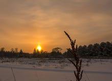 Piękny zima zmierzch z Obrazy Royalty Free