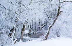 Piękny zimy landscape Obrazy Royalty Free