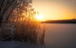 Piękny zimy landscape zdjęcia royalty free