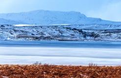 Piękny zimy landscape Fotografia Royalty Free