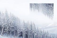 Piękny zimy landscape Geometryczny odbicie skutek Zdjęcie Royalty Free