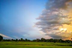 Pi?kny zmierzchu krajobraz nad prostym dzikiej trawy polem i lasem na tle obraz stock