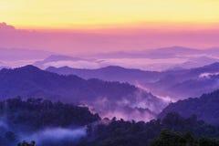Piękny zmierzchu krajobraz w lesie tropikalnym. Obrazy Royalty Free