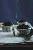 Piacere del cioccolato Fotografie Stock