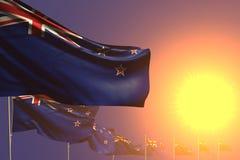 Piacevole molte bandiere della Nuova Zelanda hanno disposto diagonale sul tramonto con il posto per il contenuto - tutta l'illust illustrazione vettoriale