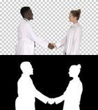 Piacevole per incontrarvi medici per incontrare e stringere le mani, Alpha Channel immagine stock
