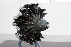 PIAGGIO P.XIX radial engine Stock Image